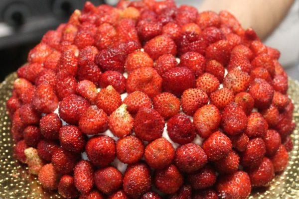 Cupola di fragoline
